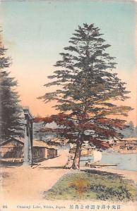 Japan Old Vintage Antique Post Card Chuzenji Lake Nikko Writing on back