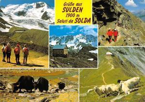 Italy Gruesse aus Sulden 1900 m Saluti Solda all'Ortles Val Venosta Alto Adige