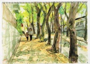 Cherry Blossom Sakura Trees Tokyo Japanese 2010 Painting Postcard