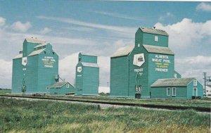 PINCHER , Alberta , Canada , 50-60s; Alberta Wheat Pool Program