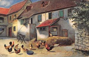 Alfred Schonian~Roosters & Hens in Village Courtyard~Hay Mound~Trough~1906 PC