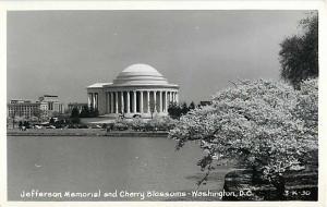 Jefferson Memorial & Cherry Blossoms Washington D.C. Real Photo
