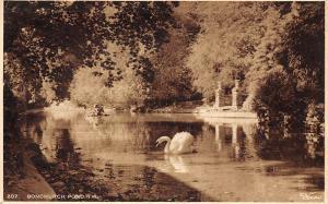 Bonchurch Pond Isle of Wight Swan Bird 1949