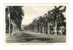 RP, Avenue Of Palms, Showing Administration Building, Balboa, Canal Zone, Pan...