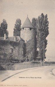 Chateau de la Tour-de-Peilz , Switzerland , 00-10s