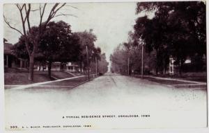 1906 OSKALOOSA Iowa Ia Postcard HOMES Street Scene