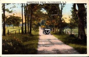New York Greetings From Patchogue Country Road Scene