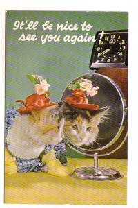 Dressed Cat with Hat Looking in a Mirror, Alarm Clock, Manhattan Post Card, M...