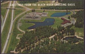 Greetings From Black River Crossing Oasis Postcard