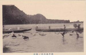 Fishermen fishing with Commorants , Japan, 00-10s 2/5