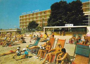 Spain Mallorca Palma Nova Hotel Cala Blanca