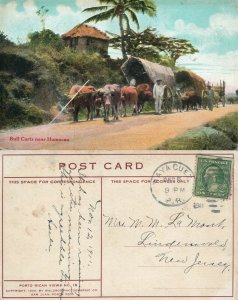 PUERTO RICO BULL CARTS NEAR HUMACAO ANTIQUE 1911 POSTCARD CORK CANCEL