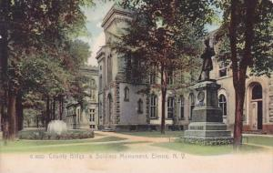 New York Elmira County Buildings & Soldiers Monument
