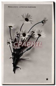 Old Postcard Fantasy Flowers Marguerite Shared affection