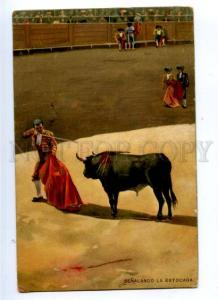 176877 Capro alimon BULL Matador Torero Vintage Stengel PC