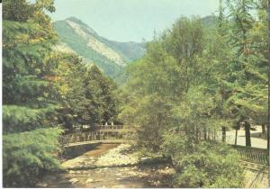 Georgia, Borjomi unused Postcard