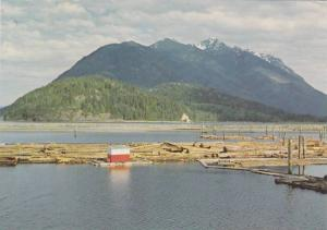 Scenic View of Kelsey Bay, Mt. Kusam Near Campbell River, Vancouver Island, B...
