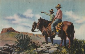 Postcard Horses Cowboys Ranger of the Southwest Vintage Linen