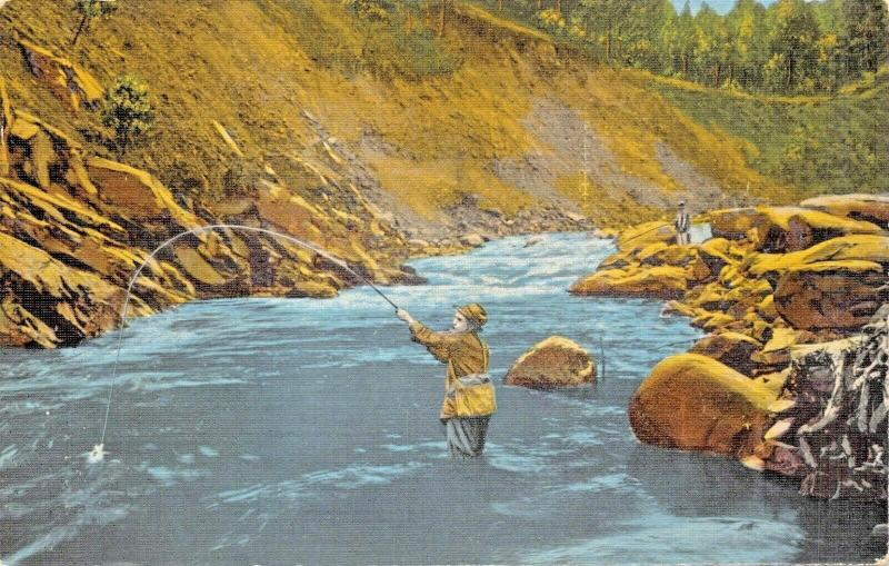 TROUT FISHING IN LITTLE RIVER-GREAT SMOKEY MOUNTAINS PARK TENNESSEE POSTCARD