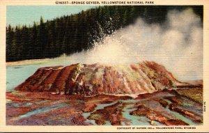 Yellowstone National Park Sponge Geyser Curteich