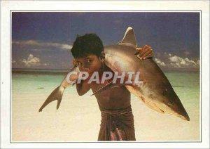 Postcard Modern Maldives has white tip shark