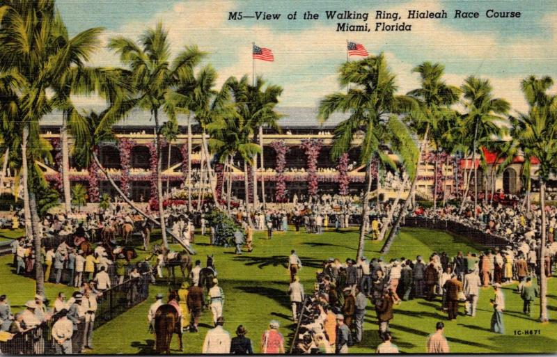 Florida Miami Hialeah Race Course View Of Walking Ring Curteich
