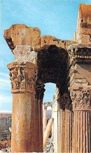 Columns in Temple of Bacchus Baalbek, Lebanon , Carte Postale writing on back
