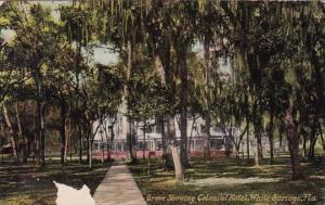 Florida White Springs Grove Showing Colonial Hotel 1918