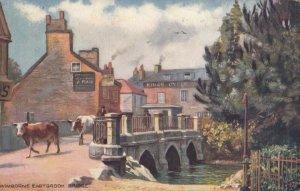 WIMBORNE , England, PU-1908 : Eastbrooke Bridge, Cattle walking,  TUCK # 7034