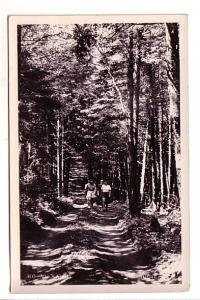Real Photo, Four Girls Walking in Woods, Ko-Vu Kamp, Minudie, Nova Scotia