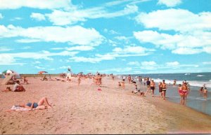 Virginia Chincoteague-Assateague Beach