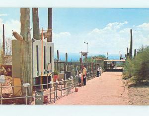 Unused Pre-1980 MUSEUM ON WATER STREET Tucson Arizona AZ hr0265
