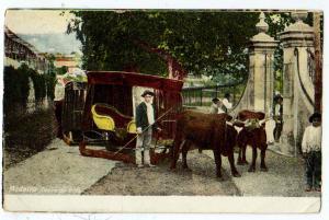 Madeira, Carro de Bois
