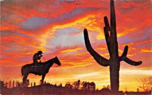 SILHOUETTE COWBOY PAUSING FOR A LIGHT- CIGARETTE SMOKING-SUNSET POSTCARD 1960s