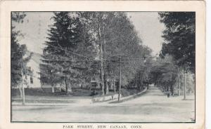 NEW CANAAN, Connecticut, PU-1913; Park Street