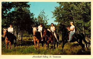Tennessee Horseback Riding
