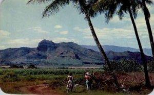 Sleeping Giant Mountain - Kauai, Hawaii HI