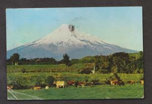 Mt Egmont, Okato, New Zealand - Used Corner Creases Lower Left