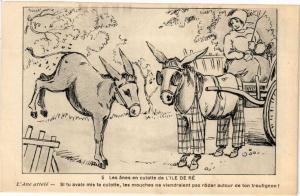 CPA Les anes en culotte de L'ILE-de-RÉ - L'Ane attelé - Si tu avais mis (183826)