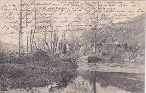 MORTAGNE, Vosges, France; Le Vieux Noulin du Port a Saint Hilaire' pres, 00-10s