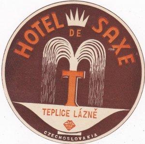 Czechoslovakia Teplice Lazne Hotel De Saxe Vintage Luggage Label sk4427