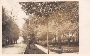 Sheboygan Falls WI Trees in Bloom on Pine Street c1907 Real Photo Postcard RPPC