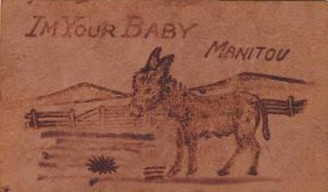 Donkey, I'm Your Baby, comic , 00-10s , Manitou , Colorado