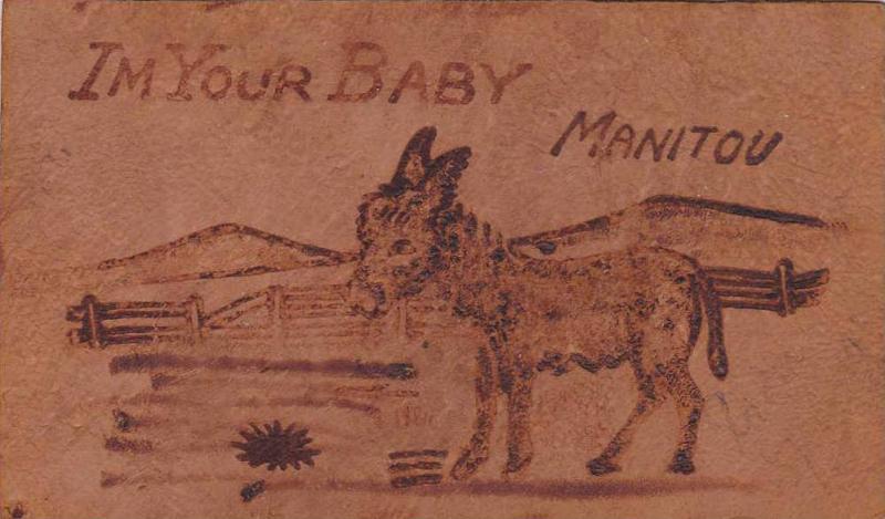 Donkey, I'm Your Baby, comic , 00-10s , Manitou , Colorado