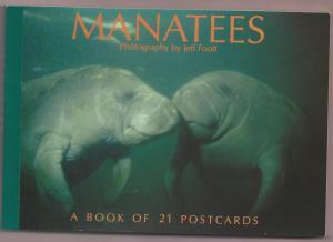 Florida Manatee postcard book