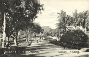 indonesia, JAVA BATAVIA, Tanah Abang (1910s) Postcard