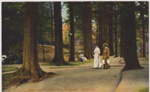 ARNHEM , (Denmark) , Laan naar de Belvedere Sonsbeek, 00-10s