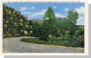 Smoky Mountains Nat'l Park,NC/TN Postcard,Chimney Tops/Loop