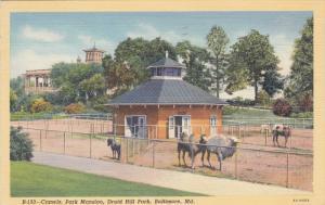 BALTIMORE, Maryland, PU-1944; Camels, Park Mansion, Druid Hill Park