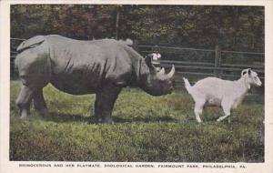 Pennsylvania Philadelphia Rhinocerus and Her Playmate Zoological Garden Fairm...